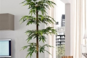 Semi Natural & Artificial Plants
